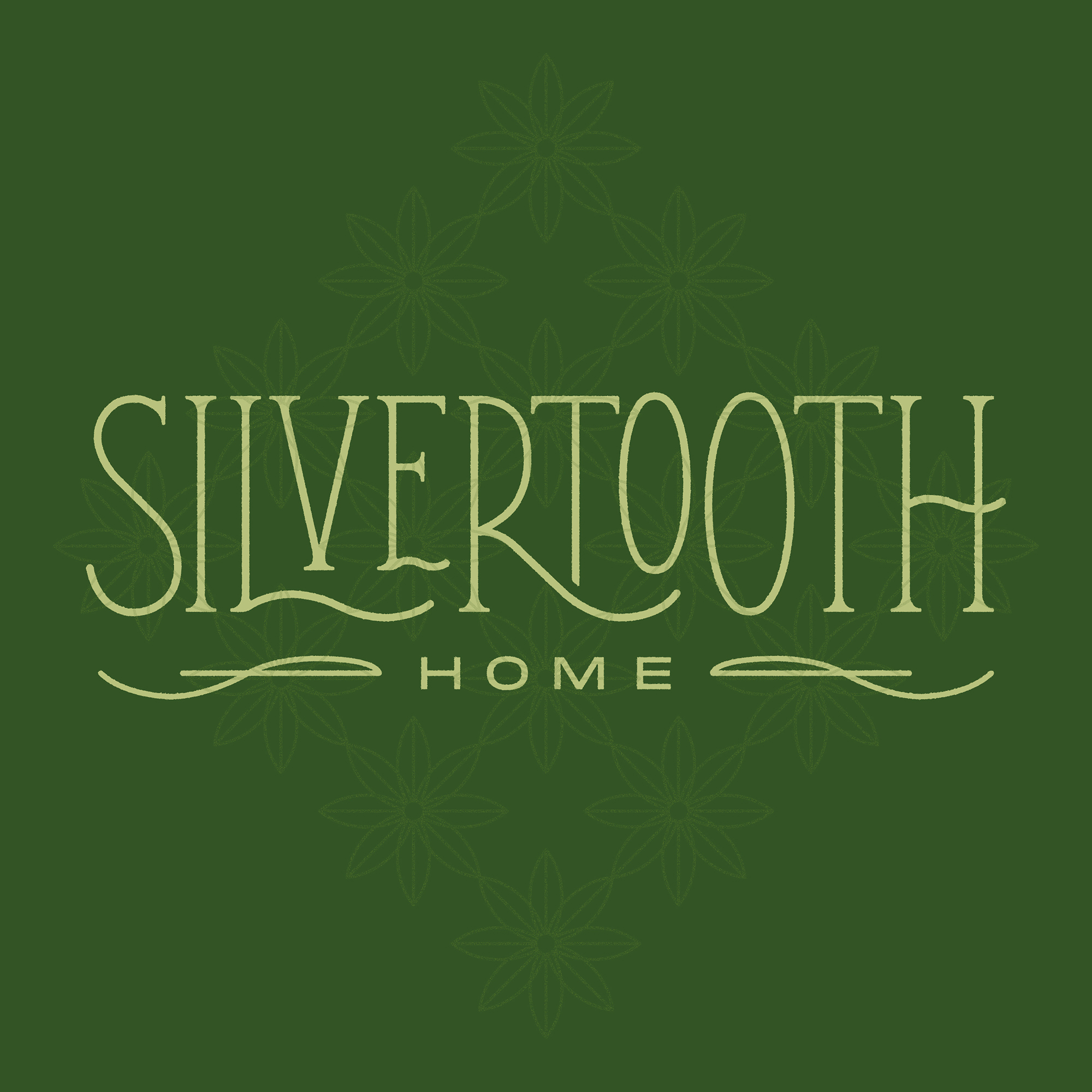Silvertooth Home